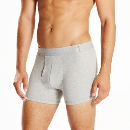 300 Series Boxer Brief