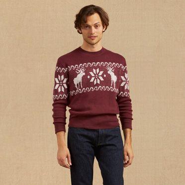 Reindeer Sportswear Sweater at Levi's in Daytona Beach, FL | Tuggl