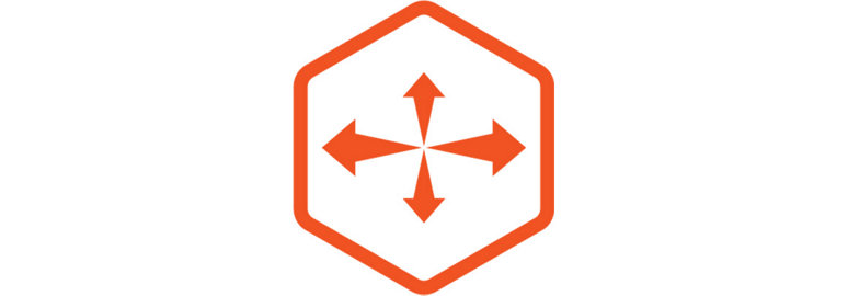 4-WAY STRETCH ICON