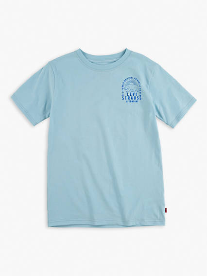 Little Boys 4-7x California Bear Arch Tee