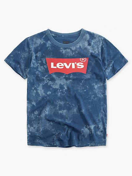 Toddler Boys 2T-4T Levi's® Bodhi Tee