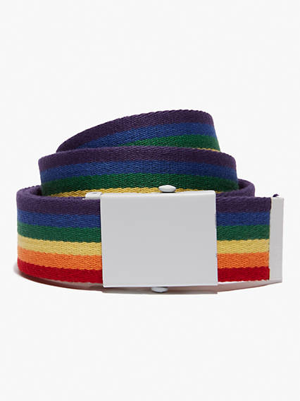 Pride Web Belt